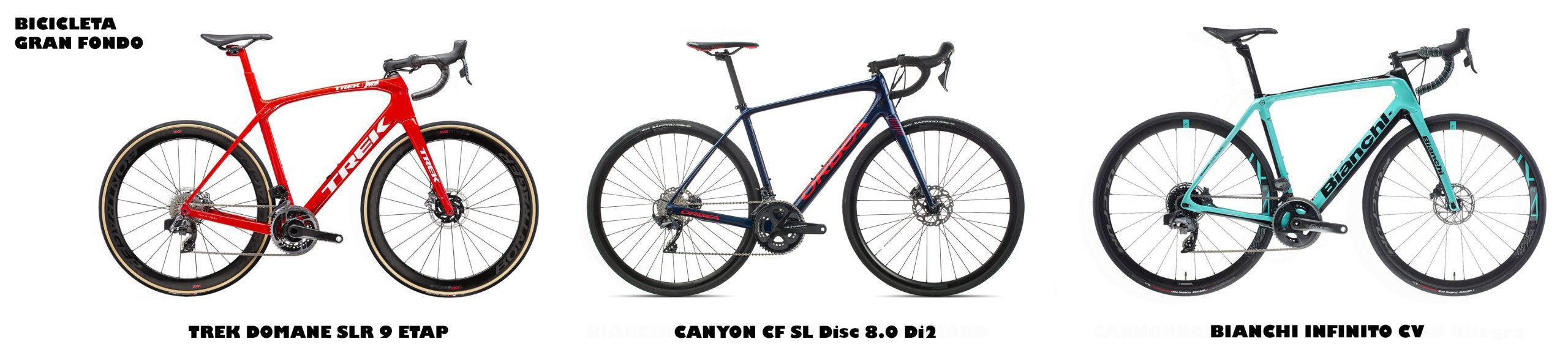 Bicicletas de gran fondo o endurance
